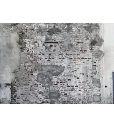 LOFT II 2023 Mural 445404